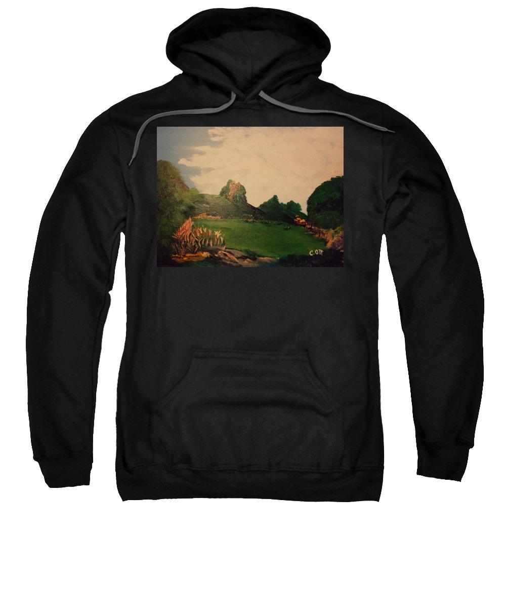 Flowers Sweatshirt featuring the painting Hidden Meadow by Calvin Ott