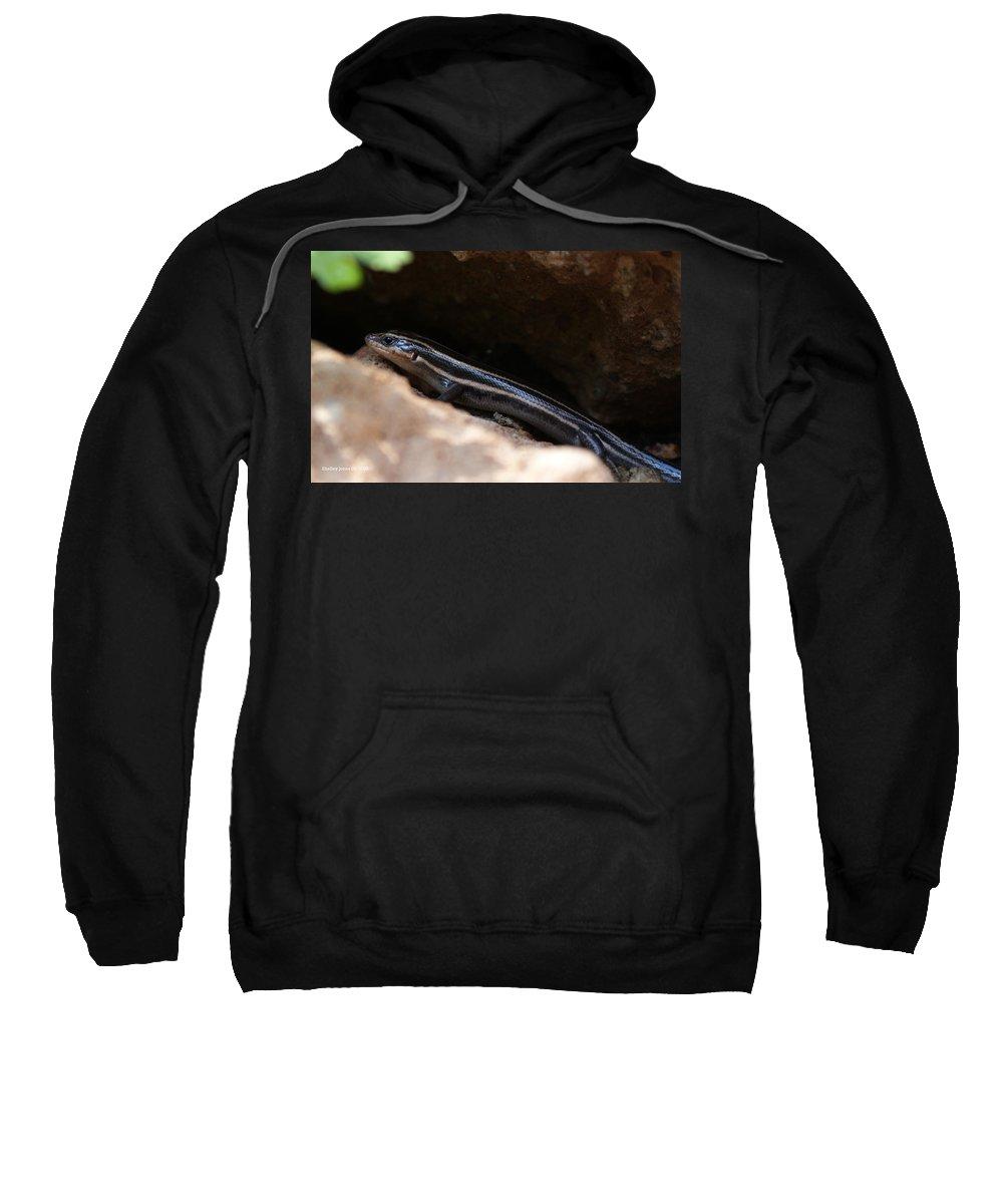 Lizard Sweatshirt featuring the photograph Hiding Out by Shelley Jones