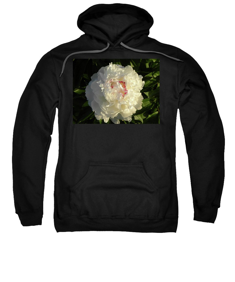 Sweatshirt featuring the photograph Hint Of Pink by Shannon Turek