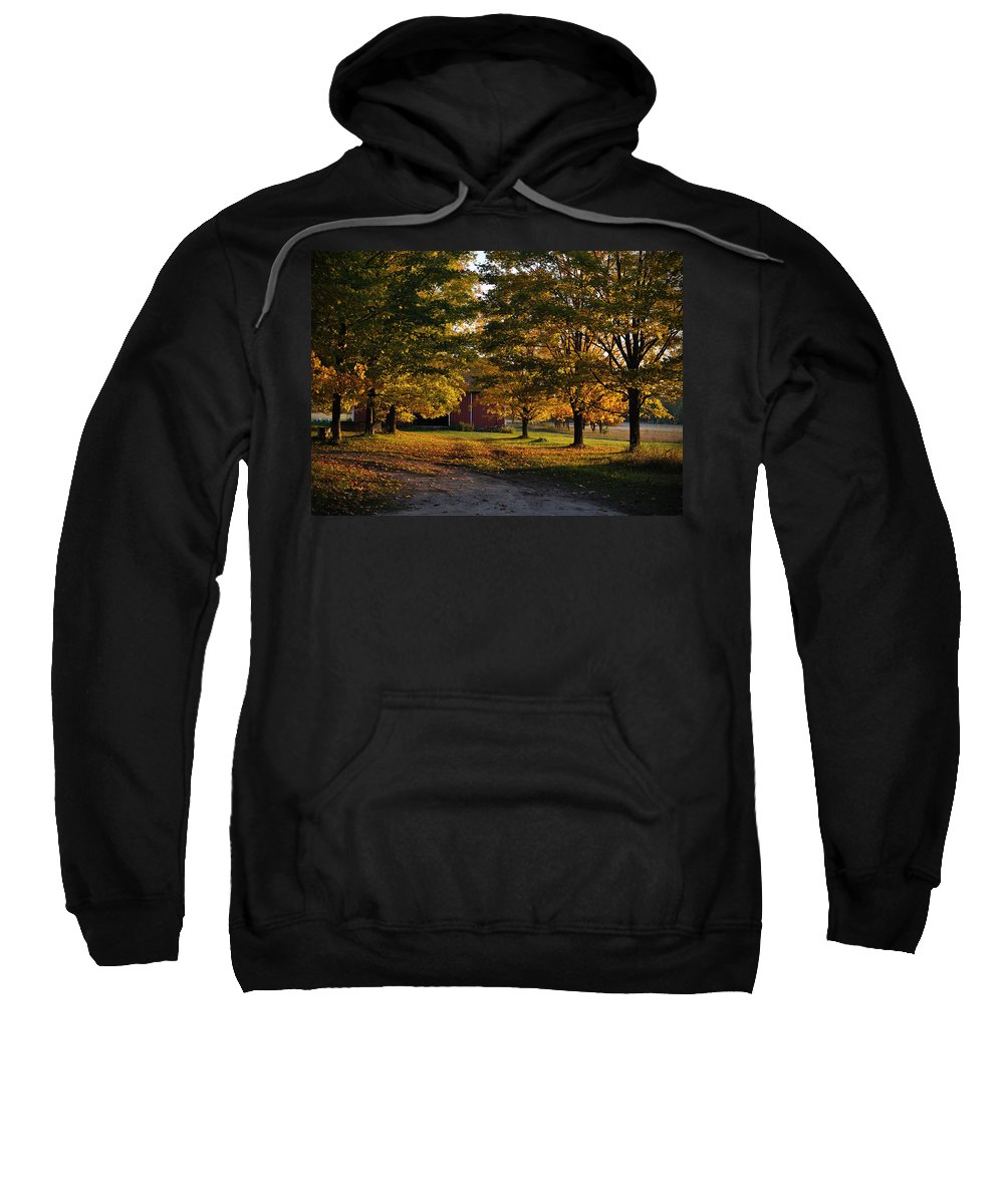 Fall Sweatshirt featuring the photograph Homecoming Two by Tim Nyberg