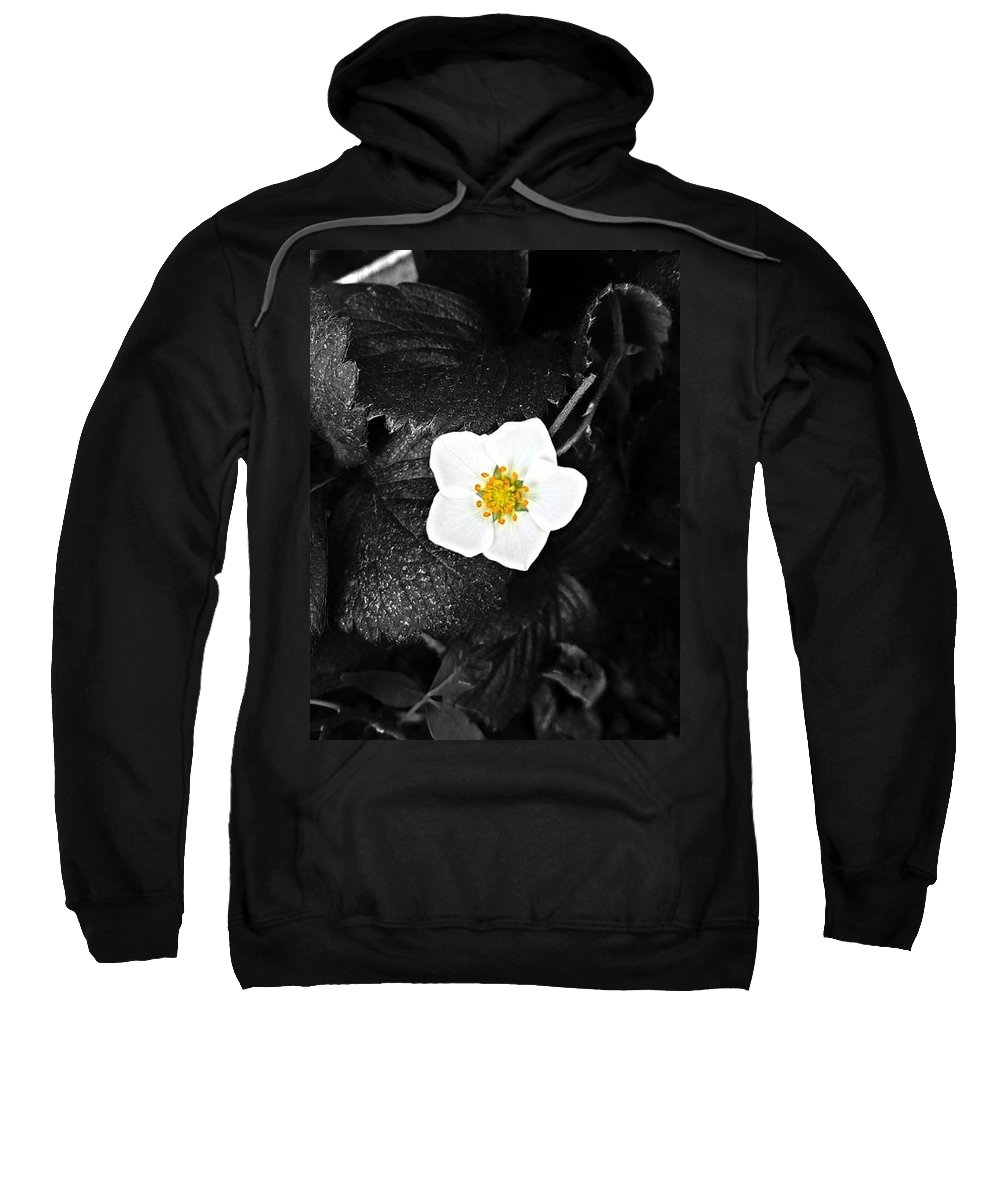 Sweatshirt featuring the photograph Hope Tucked Away In The Petals by Dominic Livingstone