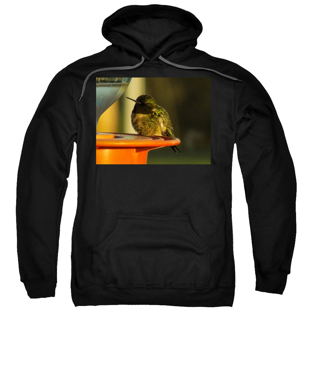 Hummingbirds Sweatshirt featuring the photograph Horizontally Challenged Hummer by William Tasker
