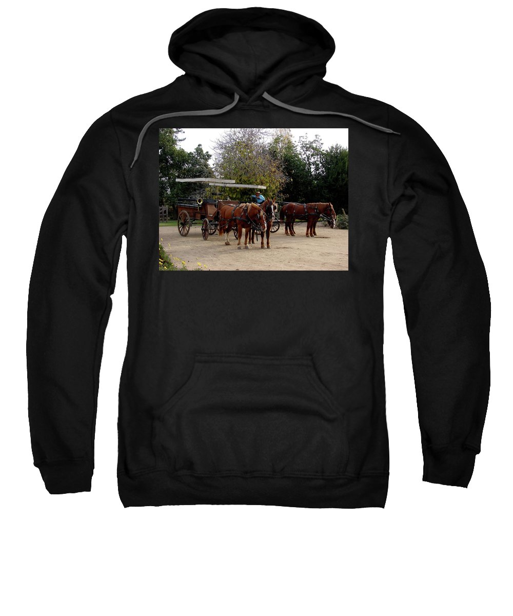 Colchagua Sweatshirt featuring the photograph Horse And Carriage by Brett Winn