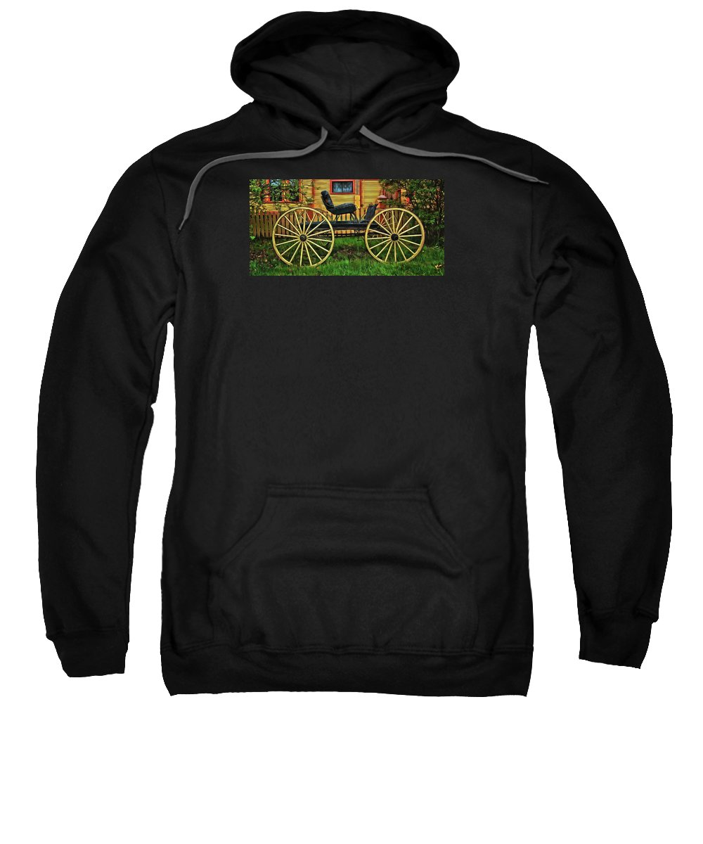 Horse And Buggy Hooded Sweatshirts T-Shirts