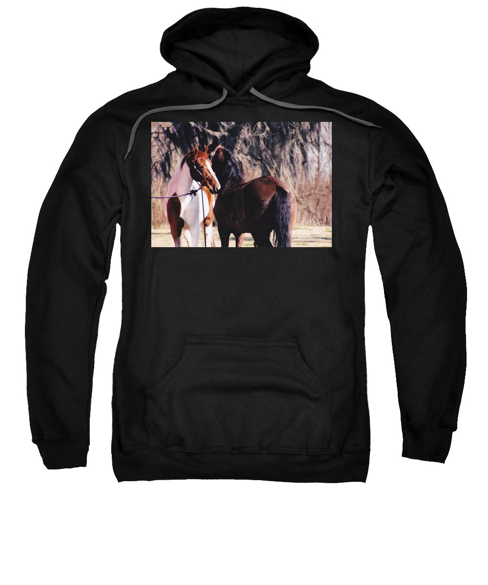 Horses Sweatshirt featuring the photograph Horse Talk by Michelle Powell