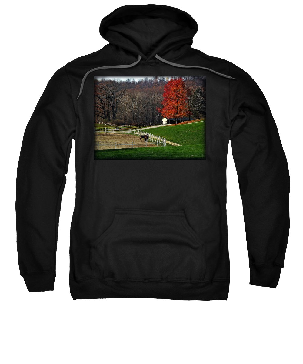 Autumn Sweatshirt featuring the photograph Horses In Autumn by Joan Minchak