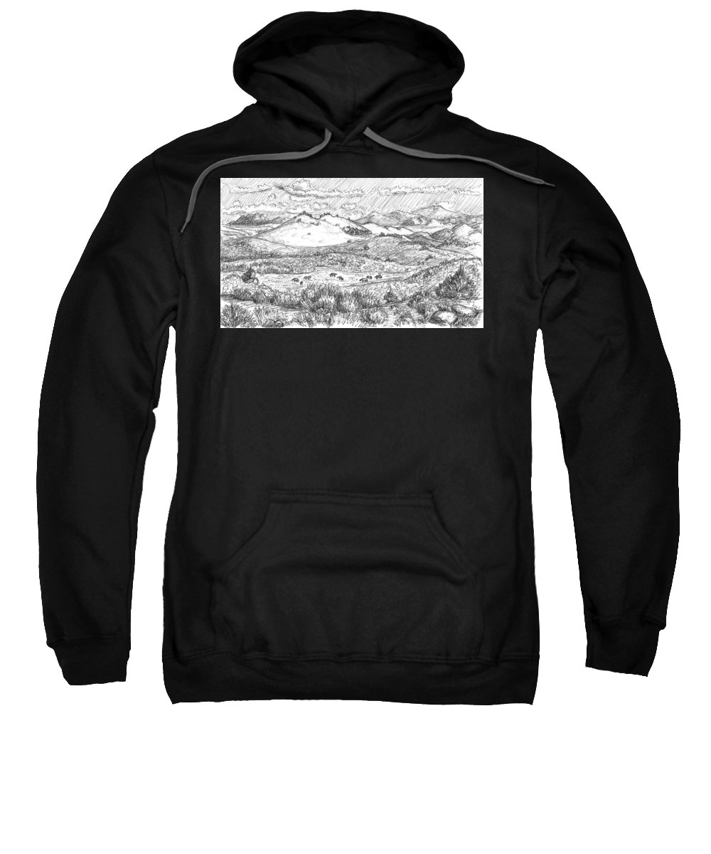 Landscape Sweatshirt featuring the photograph Horses On Summer Range Field Sketch by Dawn Senior-Trask