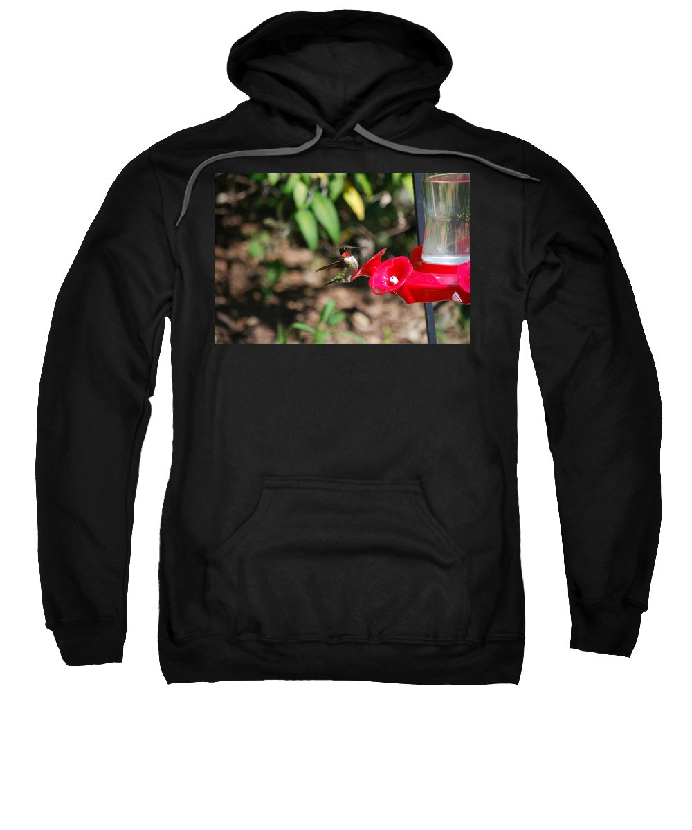 Hummingbird Sweatshirt featuring the photograph Hummer by Lori Tambakis