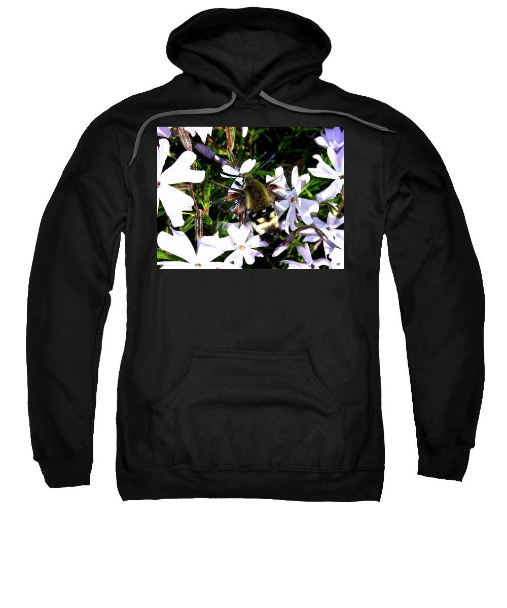 Hummingbird Moth Sweatshirt featuring the photograph Hummingbird Moth by Will Borden