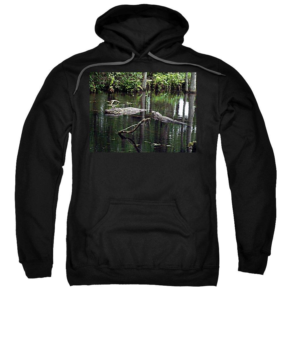 Florida Sweatshirt featuring the photograph Hunting by Bob Johnson