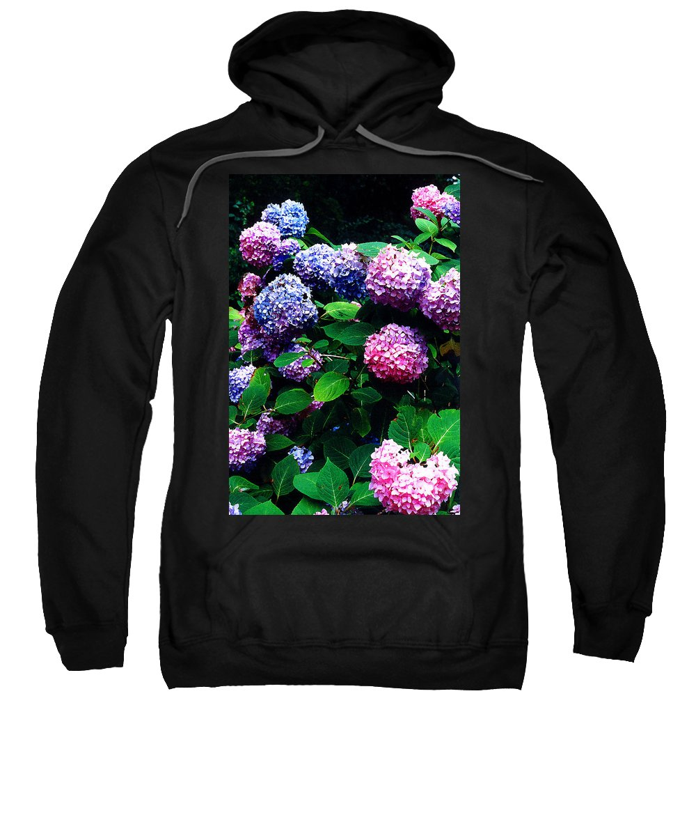 Flowers Sweatshirt featuring the photograph Hydrangeas by Nancy Mueller