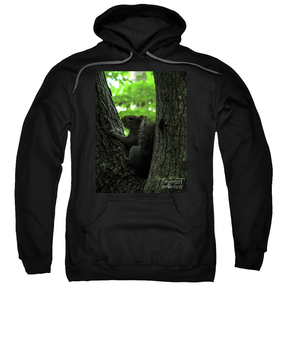 Squirrel Sweatshirt featuring the photograph I Am Here by Donna Brown