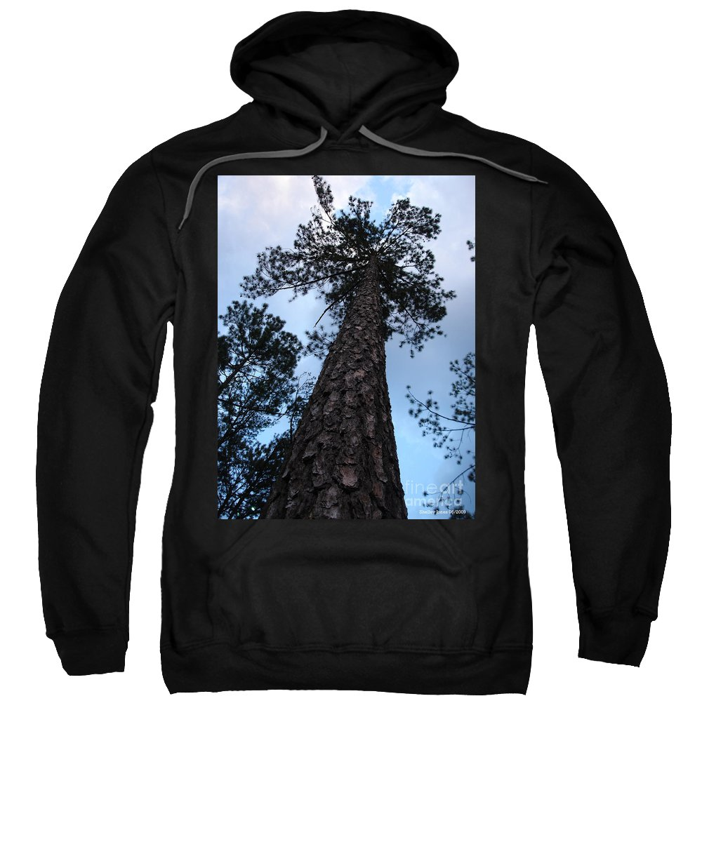 Tree Sweatshirt featuring the photograph I Can Touch The Sky.... Can You by Shelley Jones