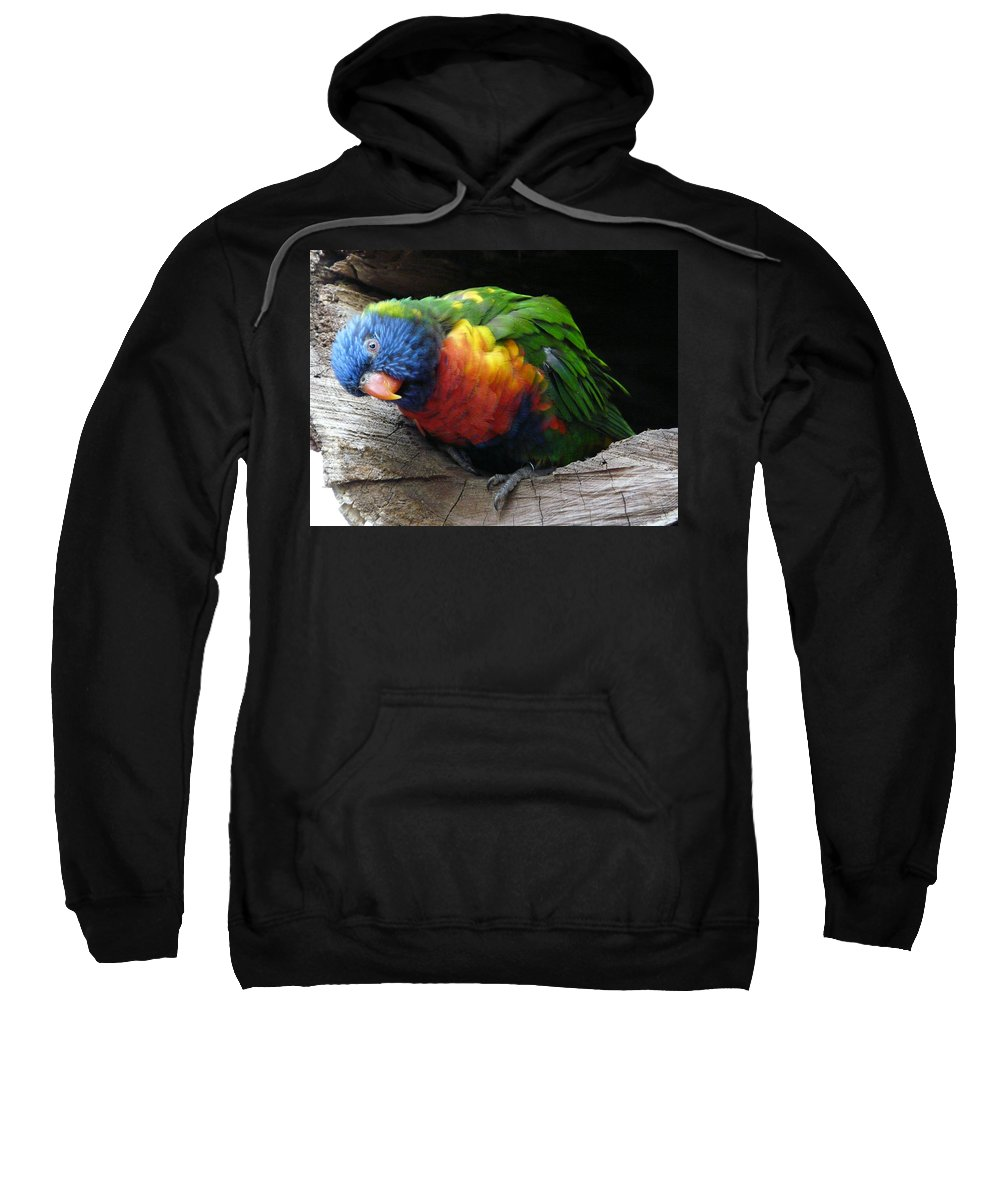 Bird Sweatshirt featuring the photograph I Hear You by Valerie Ornstein