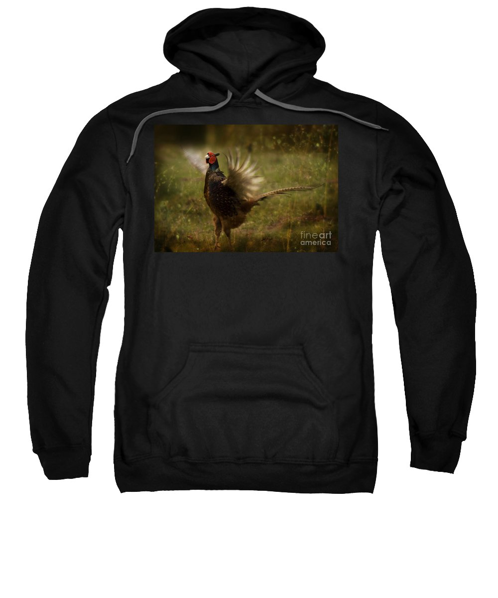 Pheasant Sweatshirt featuring the photograph I Want To Fly by Angel Ciesniarska