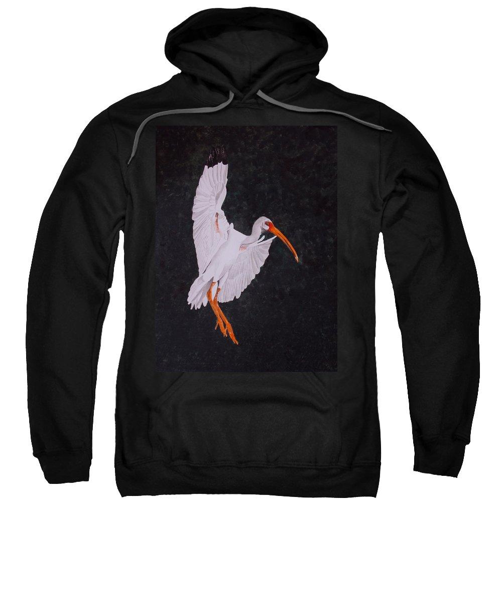 Ibis Sweatshirt featuring the painting Ibis Landing by Gary Thomas