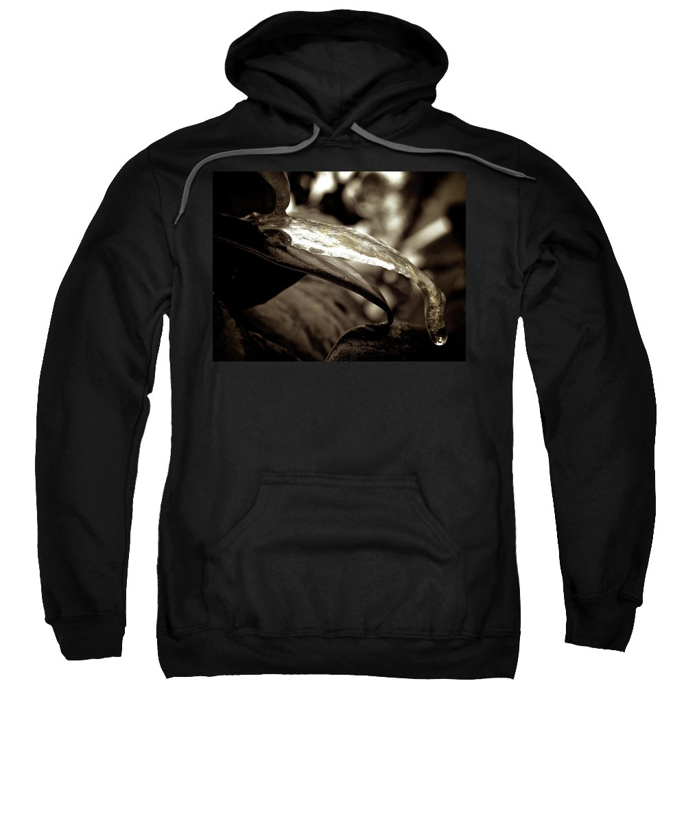 Sweatshirt featuring the photograph Ice Clone 2 by Shannon Turek