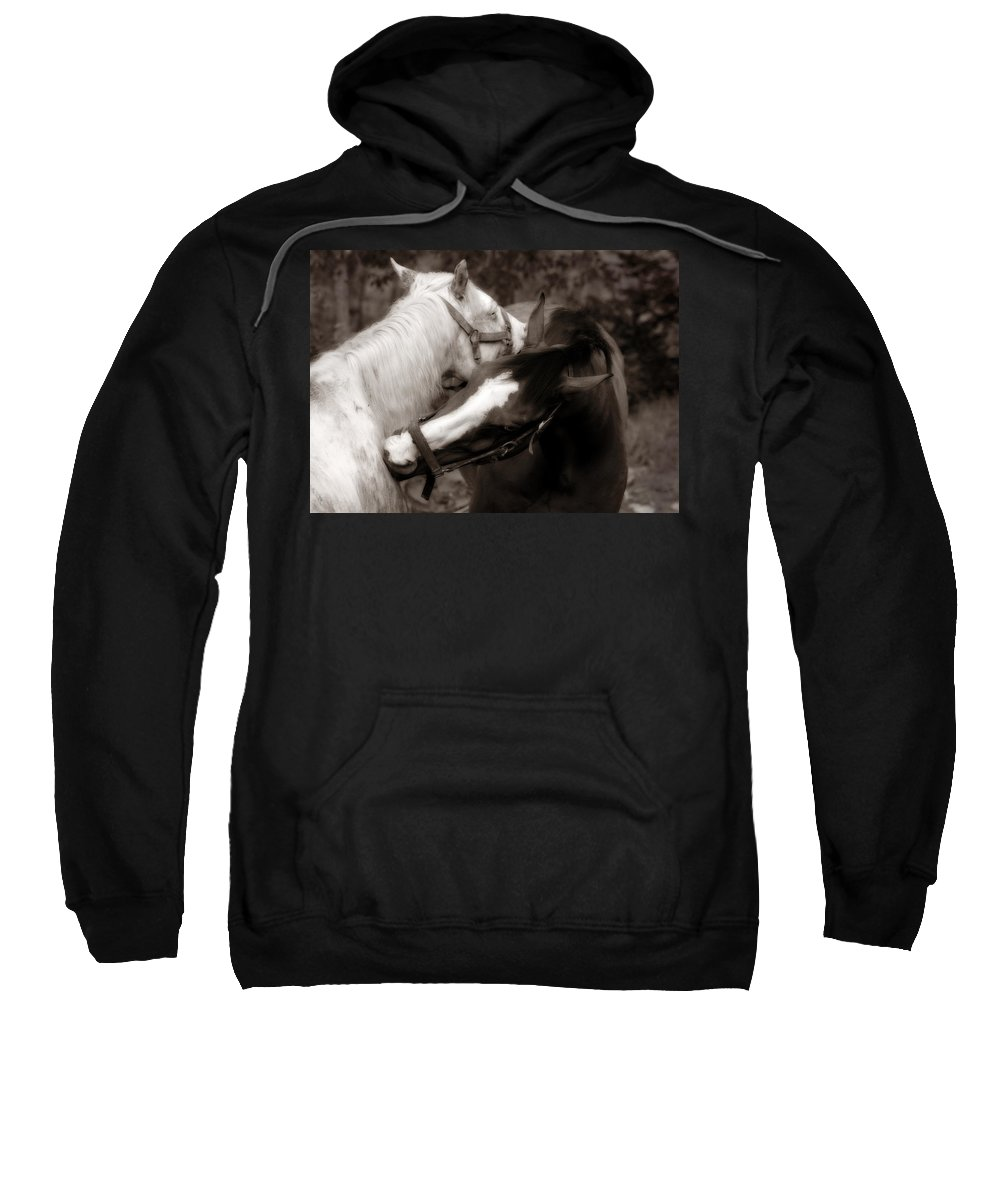 Horses Sweatshirt featuring the photograph I'll Scratch Your Back If.... by Angela Rath