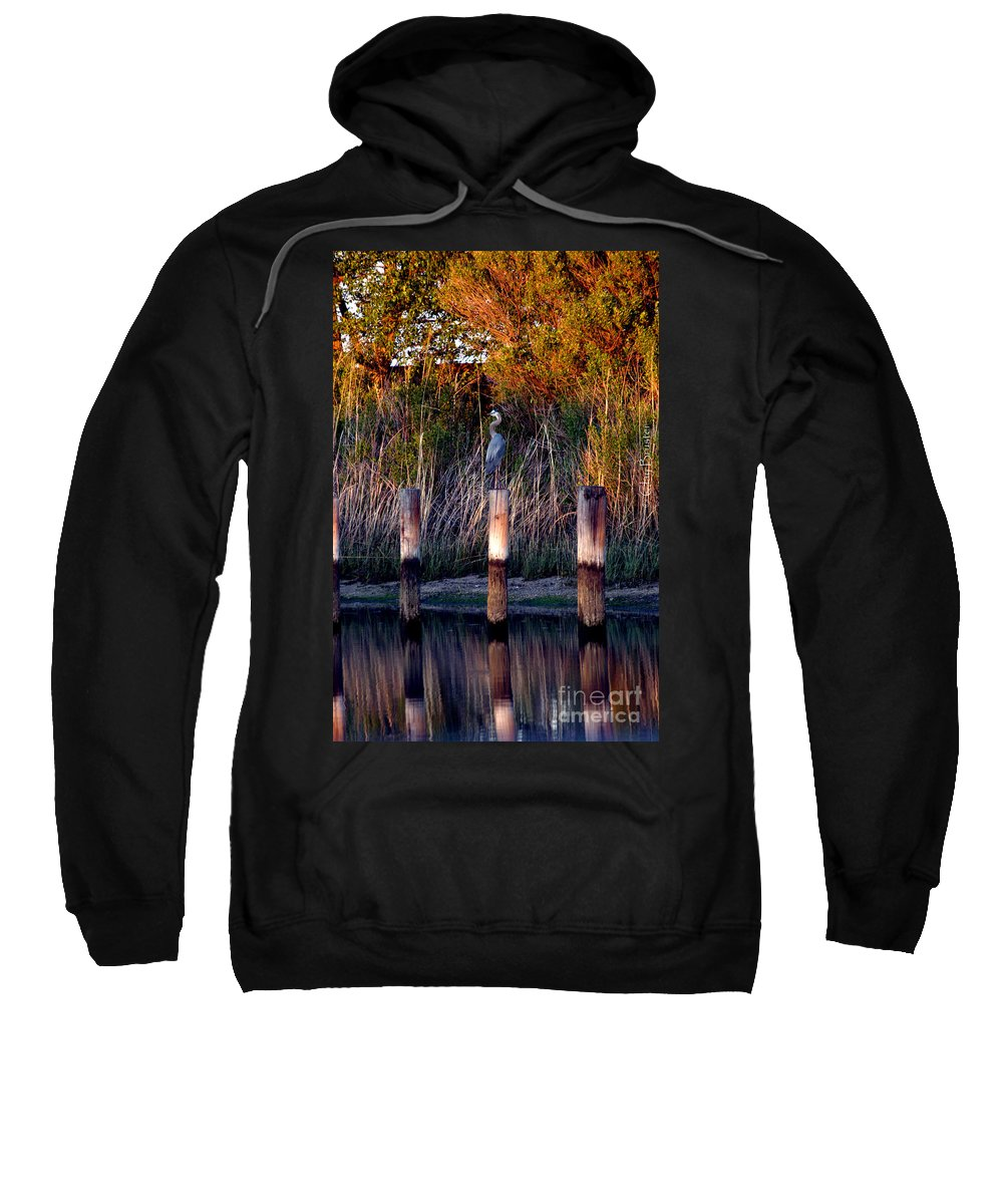 Clay Sweatshirt featuring the photograph Illusion by Clayton Bruster