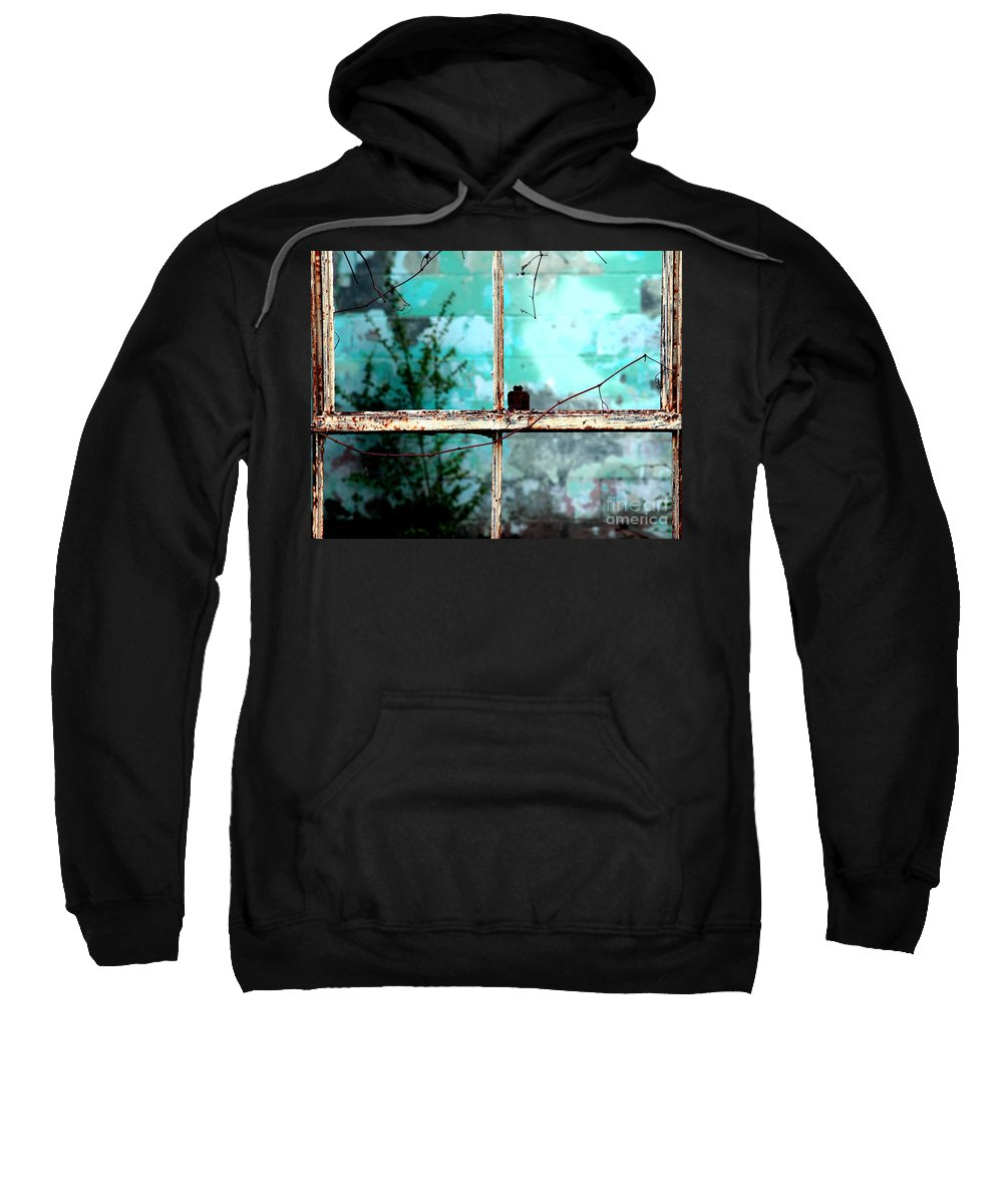 Windows Sweatshirt featuring the photograph In Or Out by Amanda Barcon
