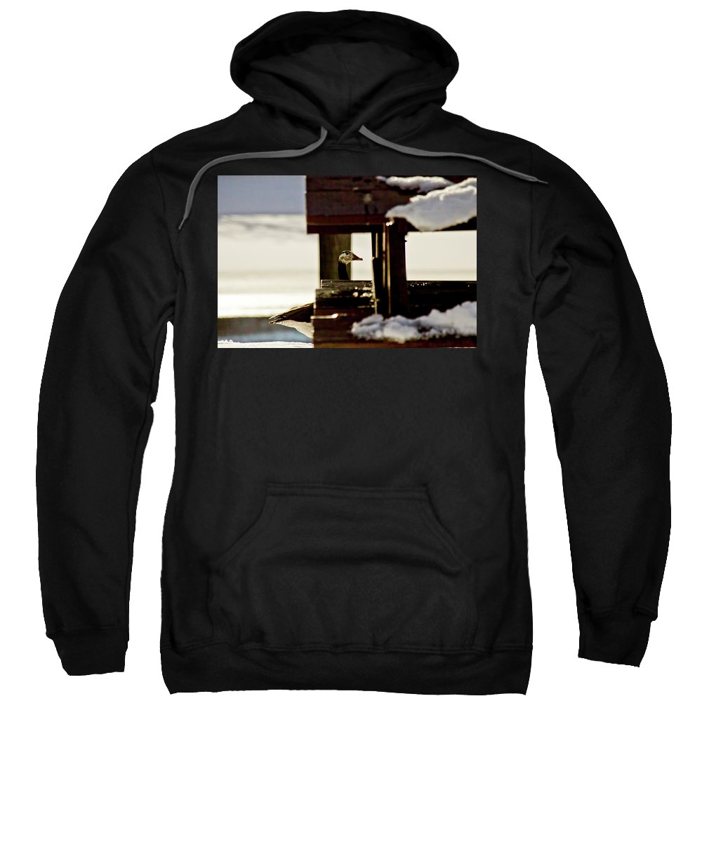 Goose Sweatshirt featuring the photograph In Plain Sight by Albert Seger
