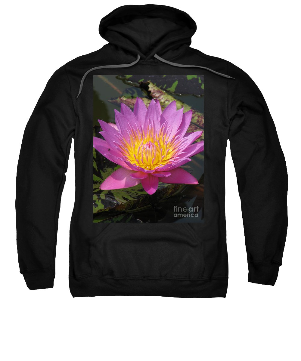 Lotus Sweatshirt featuring the photograph In Position by Amanda Barcon