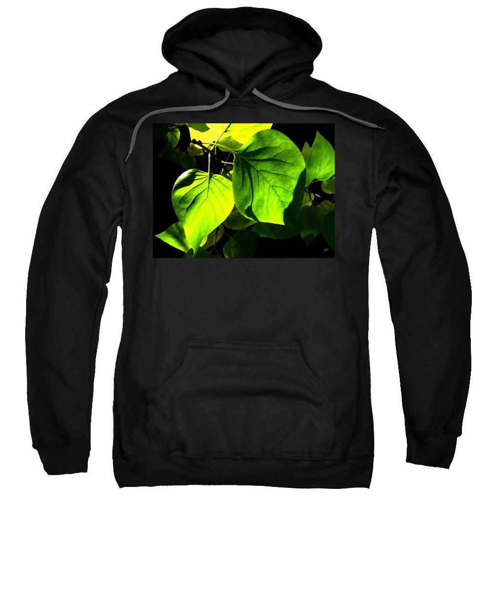 Lilac Leaves Sweatshirt featuring the photograph In The Limelight by Will Borden