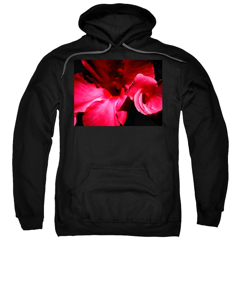 Flowers Sweatshirt featuring the photograph In The Pink 1 by Nelson F Martinez