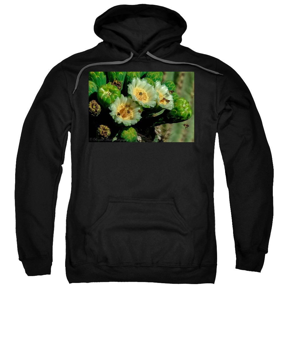 Bees Cactus Sweatshirt featuring the photograph Incoming by Ronald Hunt