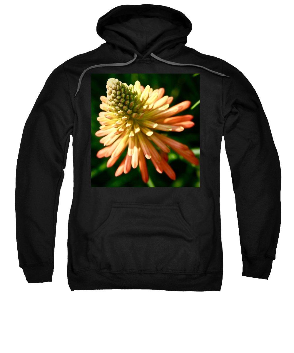 Flora Sweatshirt featuring the photograph Inn Bloom by Phil Cappiali Jr