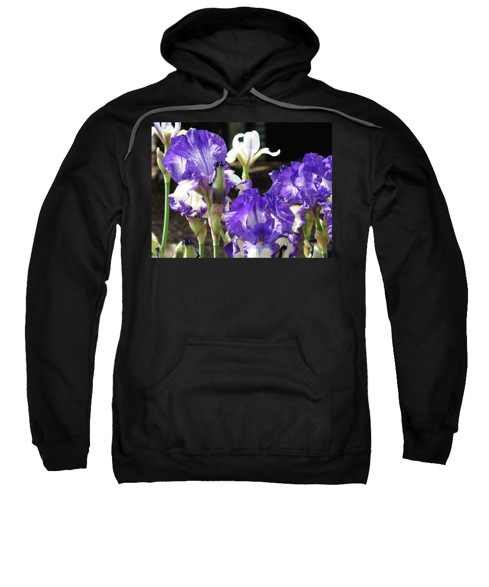 Iris Sweatshirt featuring the photograph Iris Flowers Floral Art Prints Purple Irises Baslee Troutman by Baslee Troutman