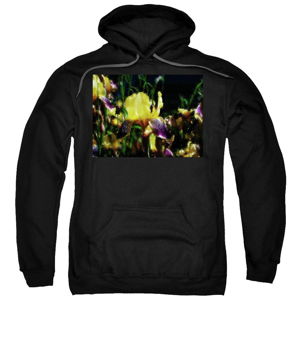 Iris Sweatshirt featuring the photograph Iris Purple And Yellow by Jo-Anne Gazo-McKim