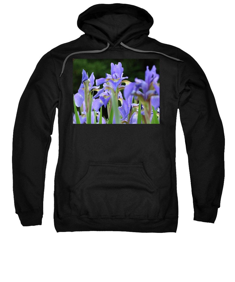Iris Sweatshirt featuring the photograph Irises Flowers Art Prints Blue Purple Iris Floral Baslee Troutman by Baslee Troutman