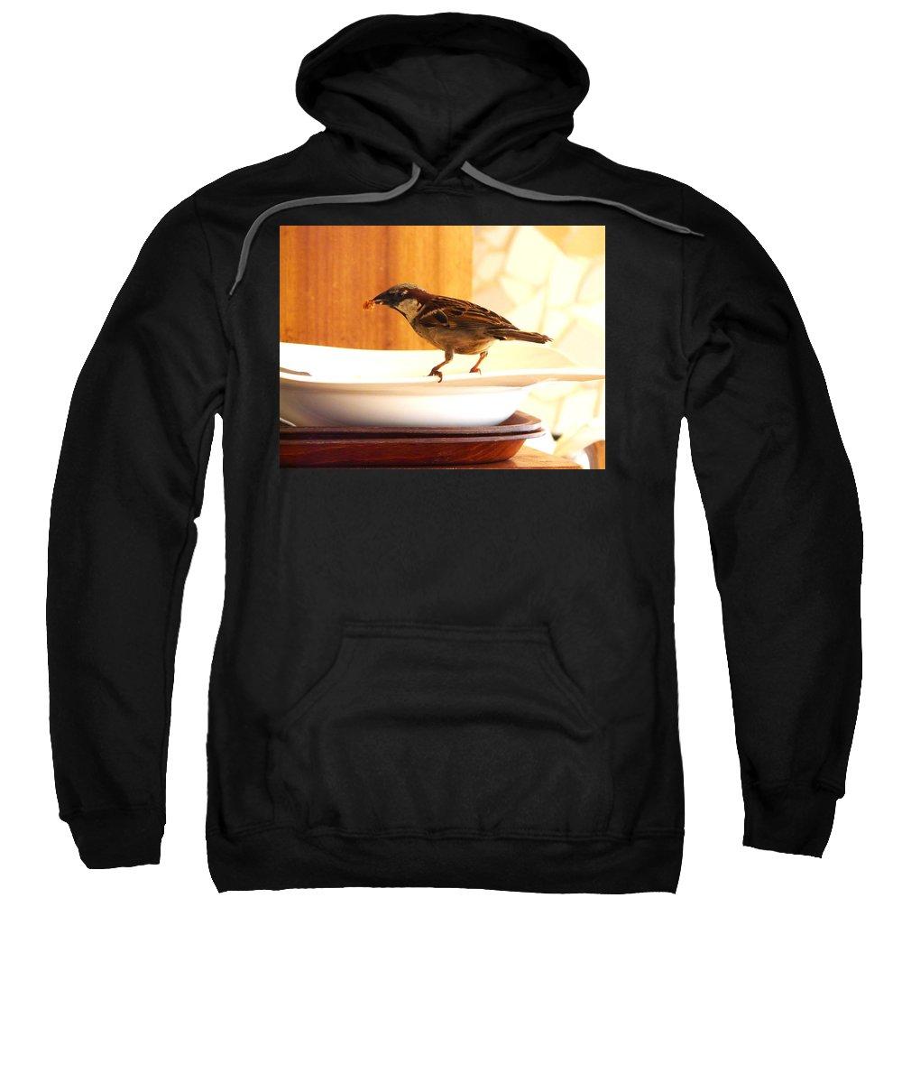 Bird Sweatshirt featuring the photograph It Is My Turn by Valerie Ornstein