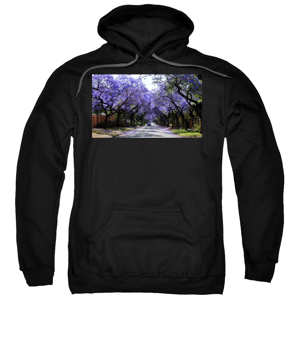 Jacaranda Sweatshirt featuring the photograph Jacarandas In Pretoria by Lene Pieters