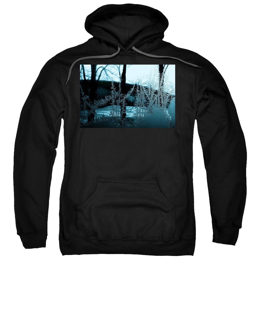 Ice Sweatshirt featuring the photograph Jack's Return by Danielle R T Haney