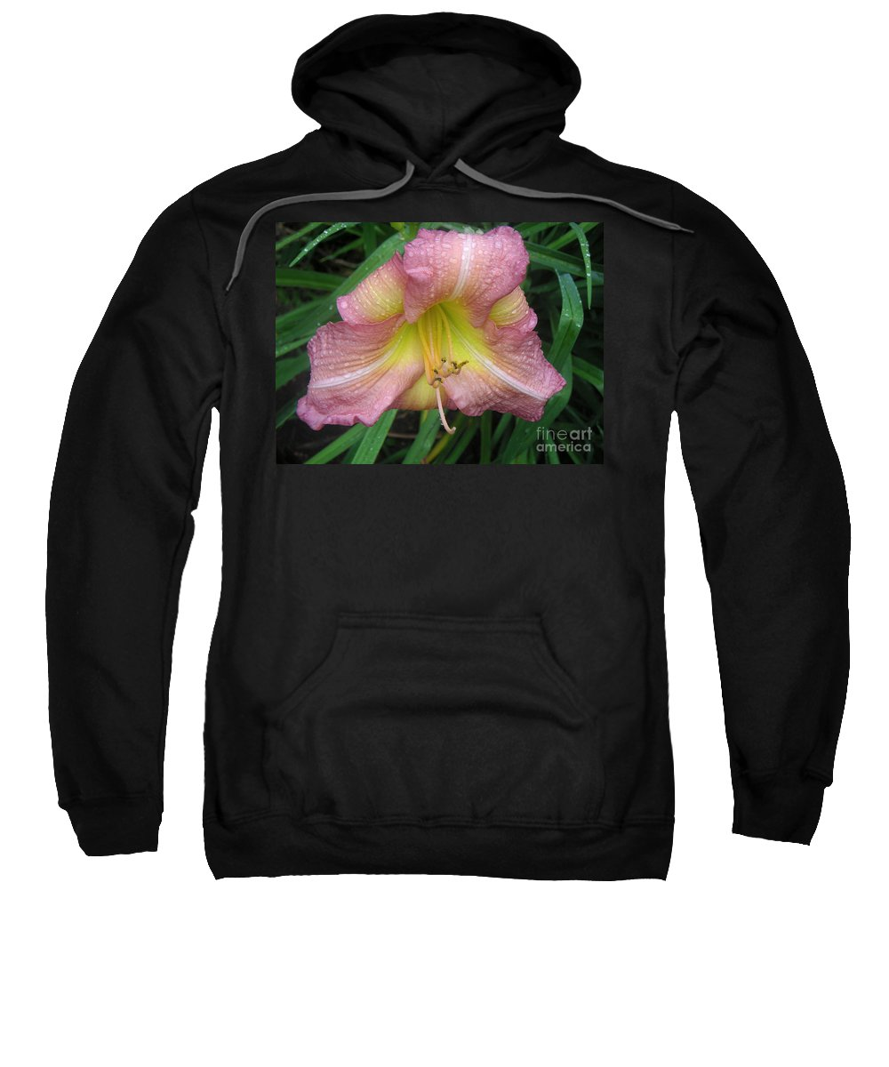 Nature Sweatshirt featuring the photograph Jacqueline's Garden - Lily Glistening Too by Lucyna A M Green