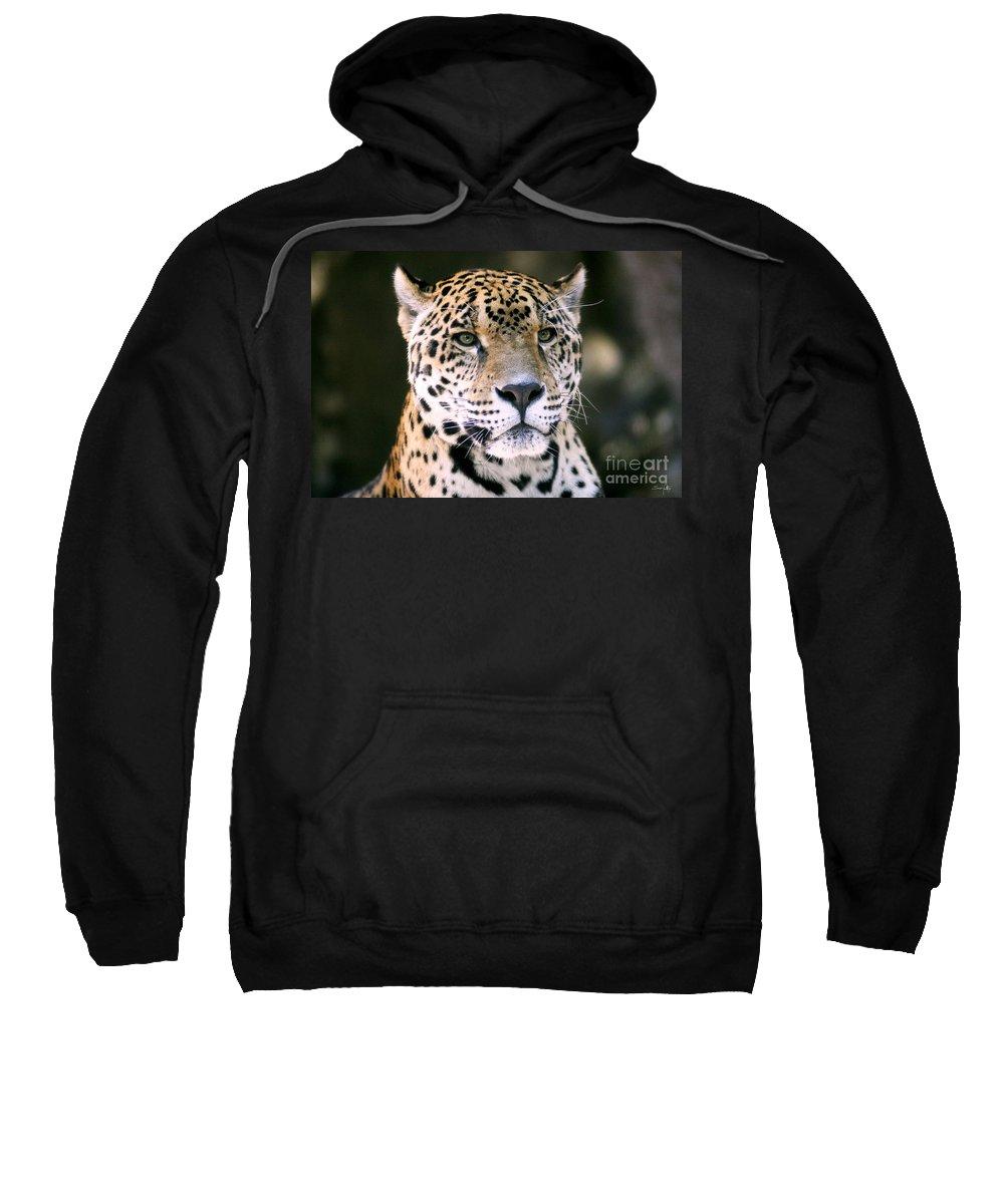 Jaguar Sweatshirt featuring the photograph Jaguar by Scott Pellegrin