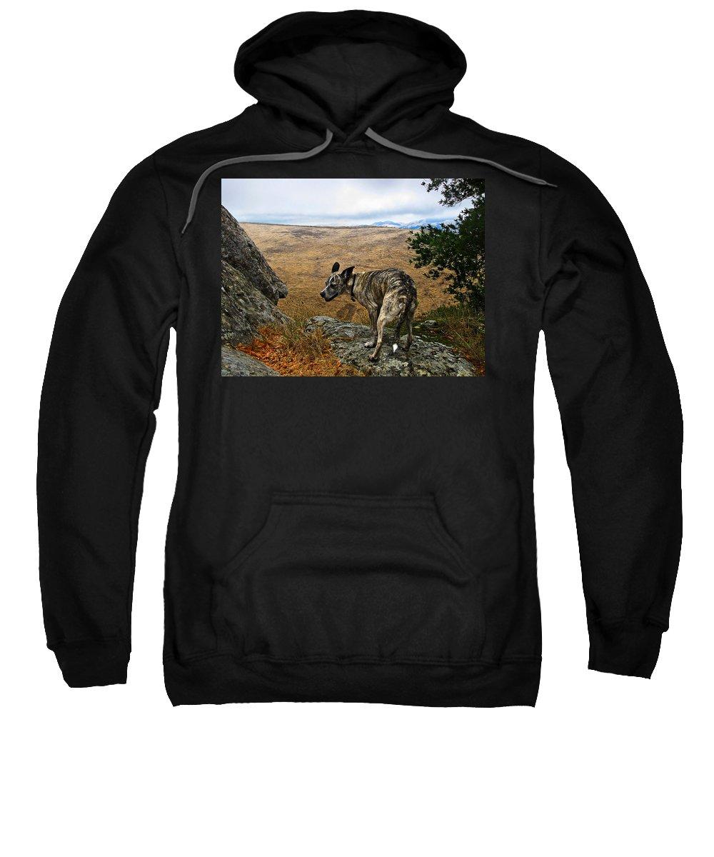 Las Trampas Sweatshirt featuring the photograph Jazz On The Rocks by Karen W Meyer