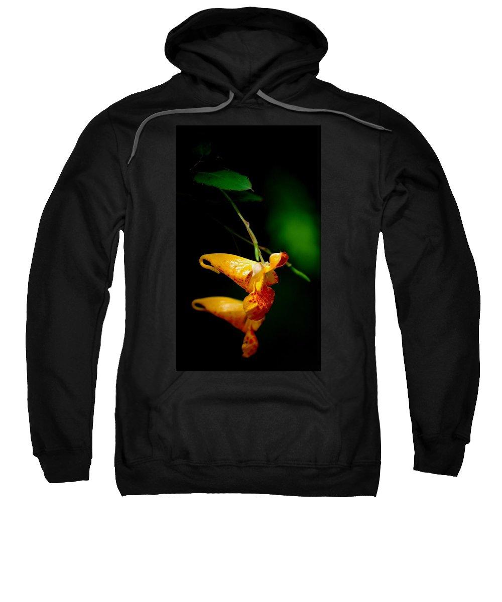 Digital Photograph Sweatshirt featuring the photograph Jewel by David Lane