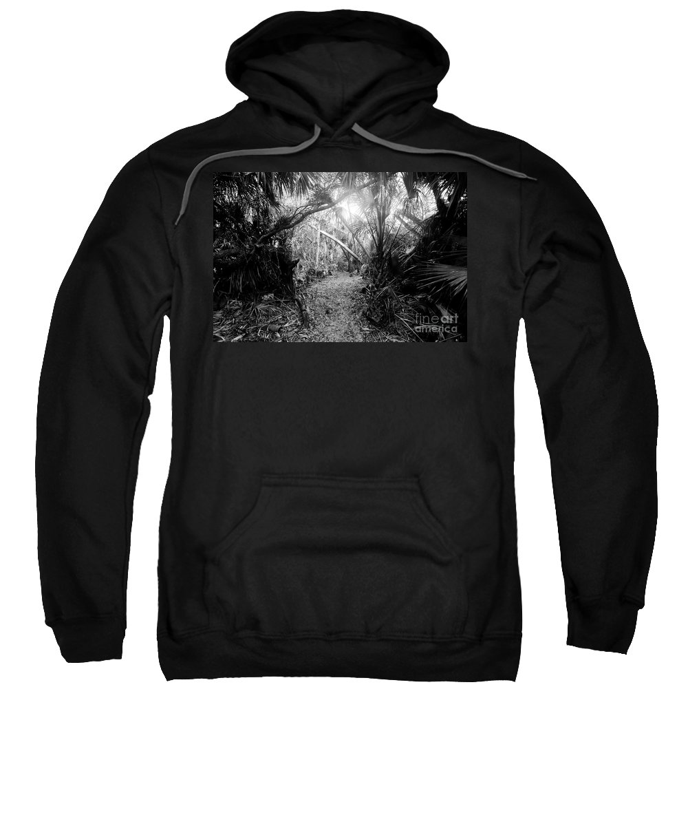 Jungle Sweatshirt featuring the photograph Jungle Trail by David Lee Thompson