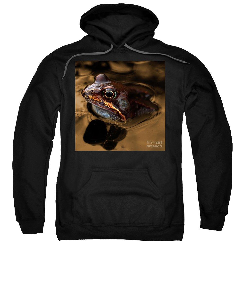 Frog Sweatshirt featuring the photograph Kermitt In Bronze by Rob Hawkins