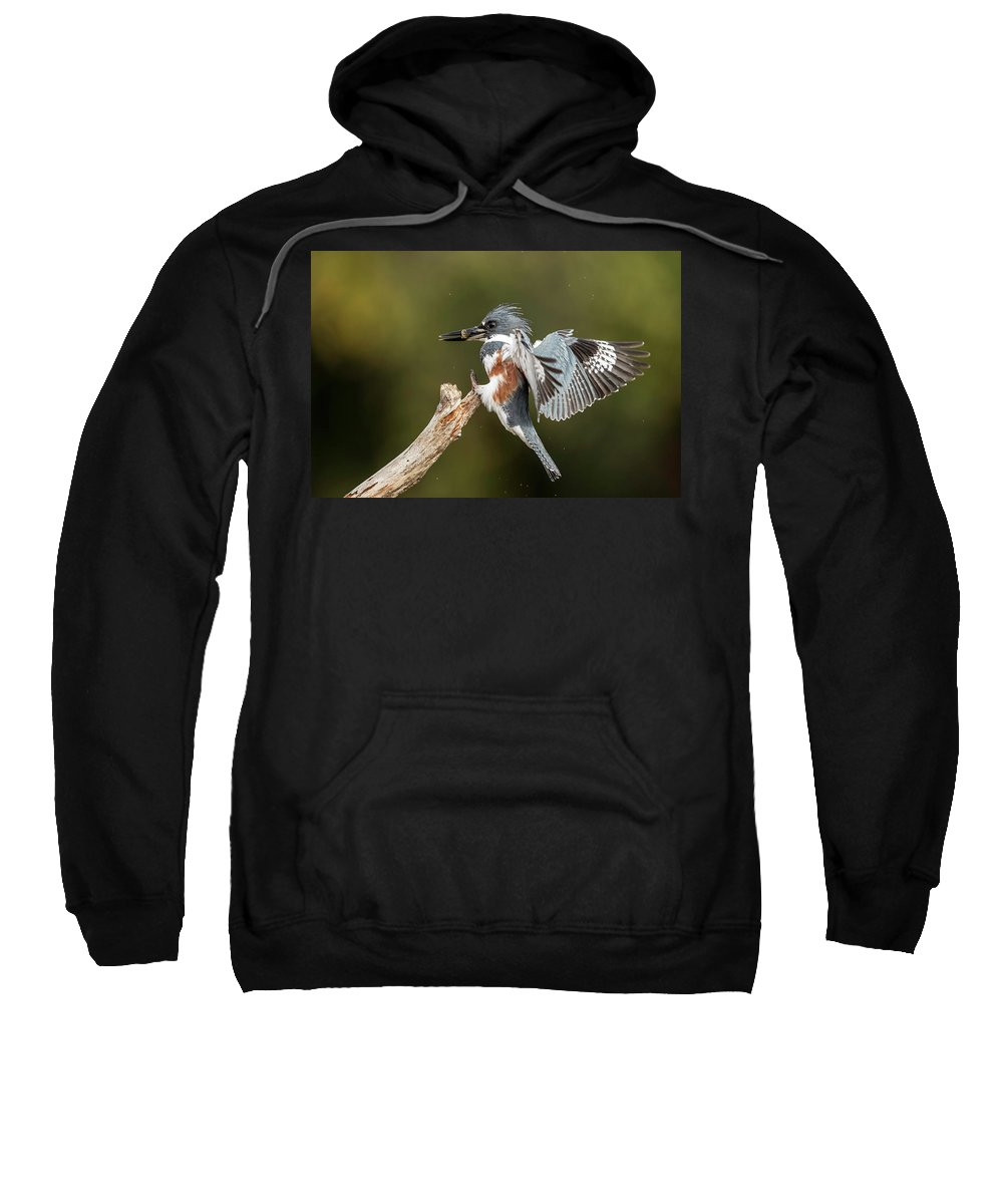Kingfisher Sweatshirt featuring the photograph Kingfisher by Les Lenchner