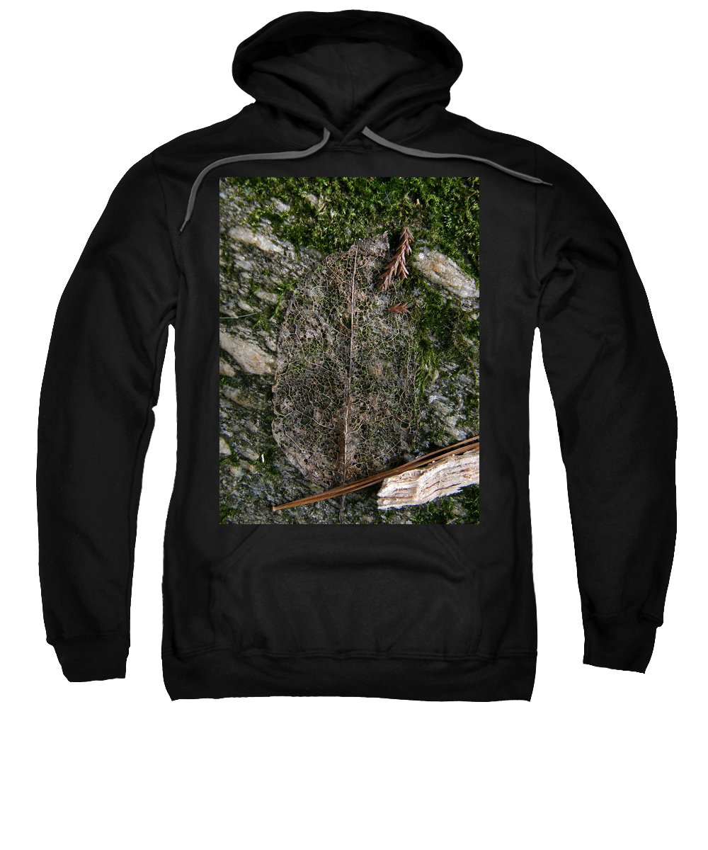 Leaf Sweatshirt featuring the photograph Lacey Leaf by Kimberly Mohlenhoff