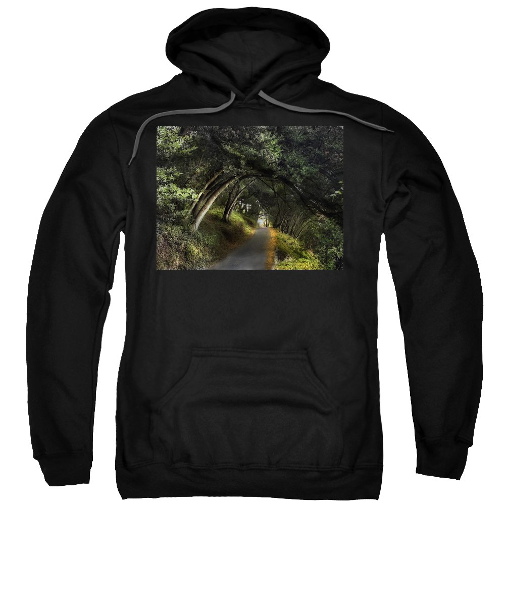 Landscapes Sweatshirt featuring the photograph Lake Chabot by Karen W Meyer