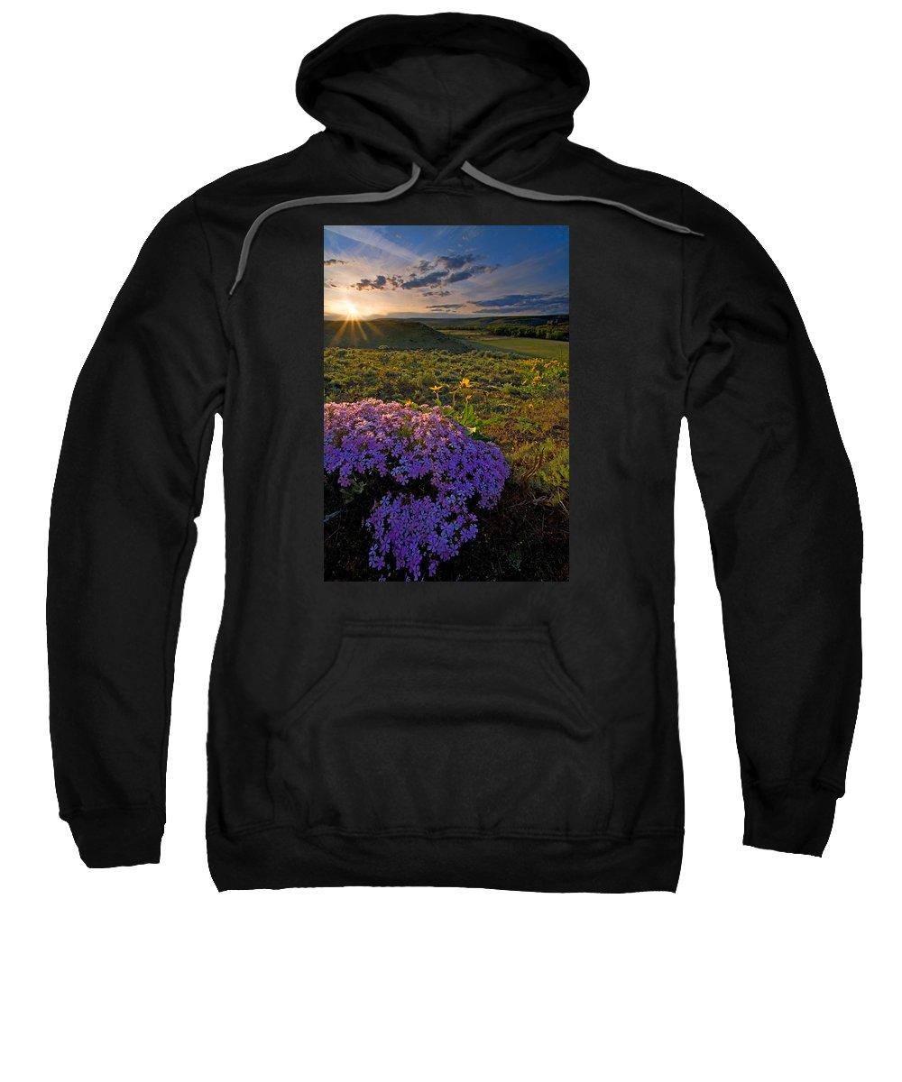 Wildflowers Sweatshirt featuring the photograph Last Light Of Spring by Mike Dawson