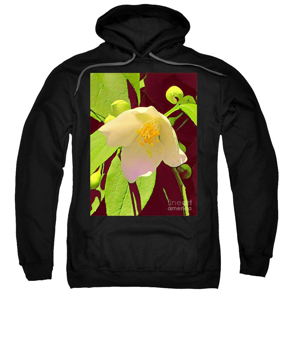 Flower Sweatshirt featuring the mixed media Late Spring Flower by Glenn Wilson Boerstler II
