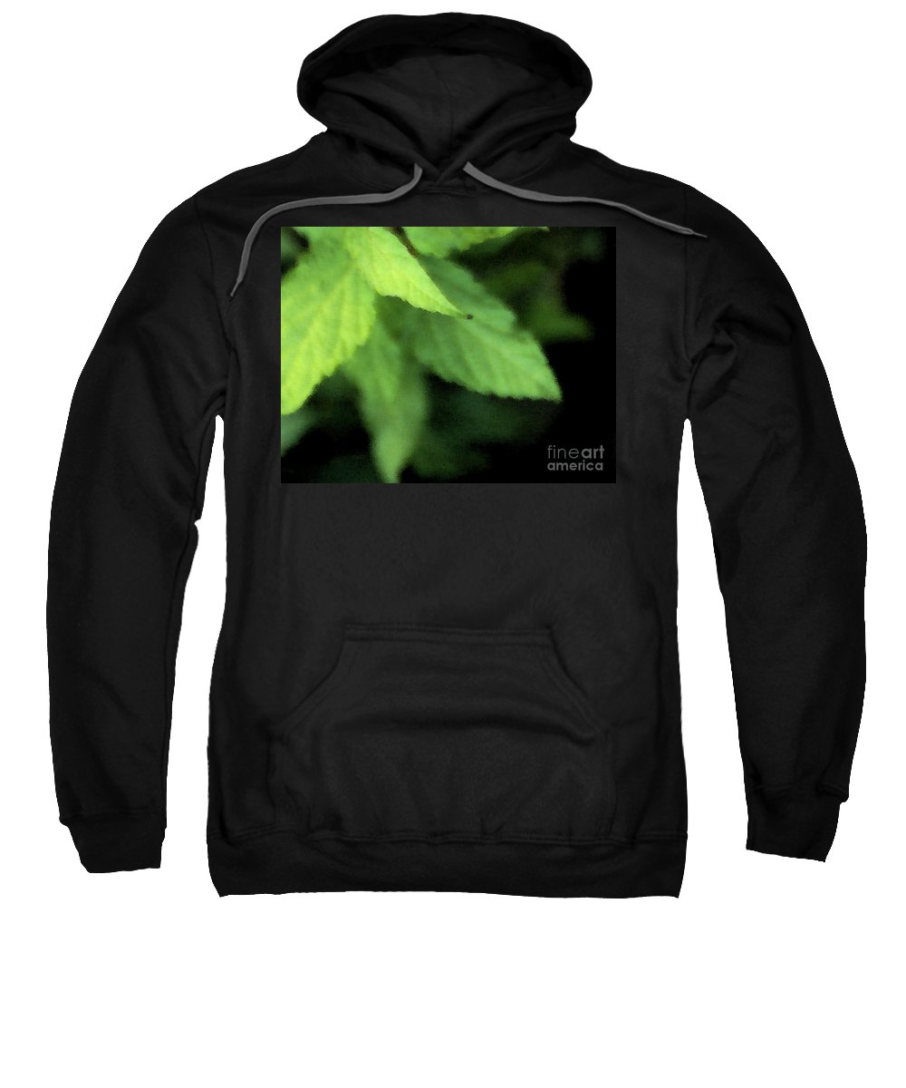 Leaves Sweatshirt featuring the photograph Layered Leaves by Linda Shafer