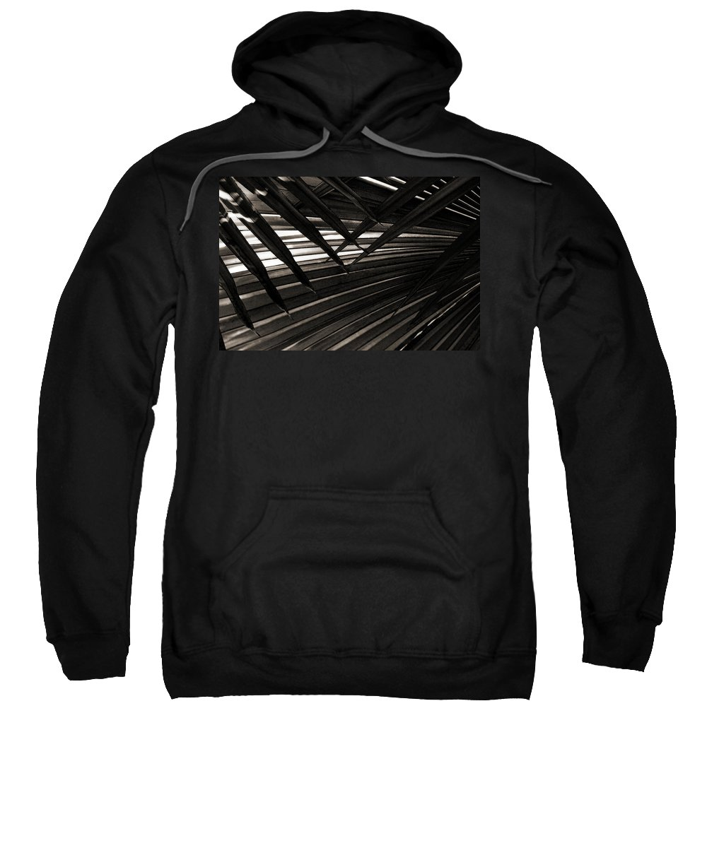 Palm Sweatshirt featuring the photograph Leaves Of Palm Black And White by Marilyn Hunt