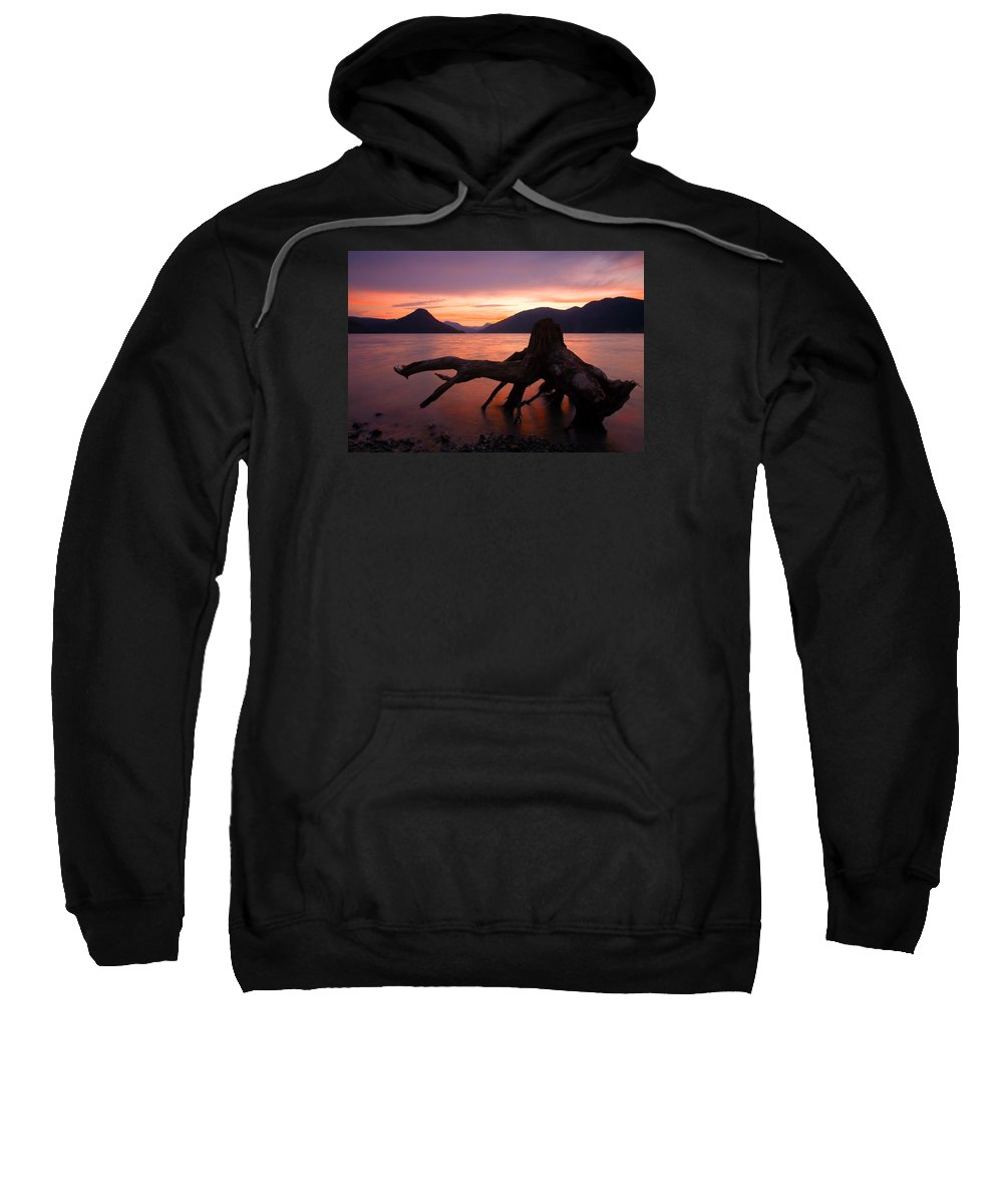 Stump Sweatshirt featuring the photograph Left Behind by Mike Dawson